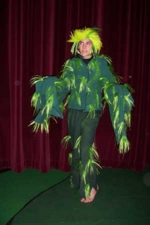 Seussical - Costumes