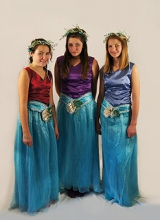 The Little Mermaid Costume Rental Mersisters King Triton Merfolk