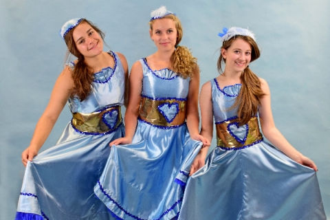 Beauty & the Beast - Enchanted Napkin Costumes Can-Can Be Our Guest