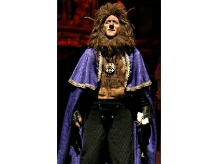 Beauty and the Beast Costume Rental - Beast