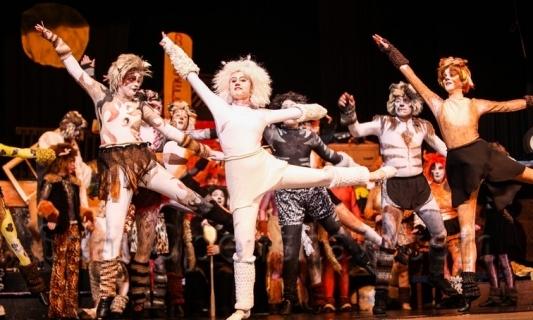 Phish Musical Costumes Cats