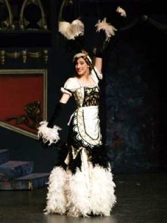 Beauty & the Beast - Babette Enchanted Feather Duster Costume