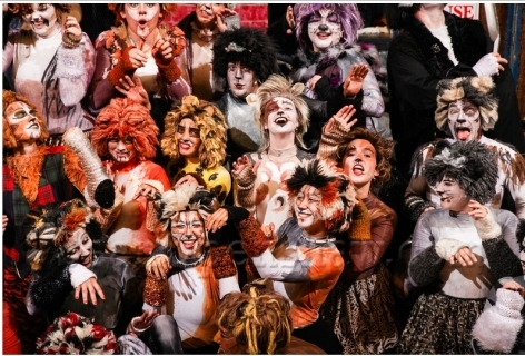 Cats Musical Costumes For Sale Cat S Blog