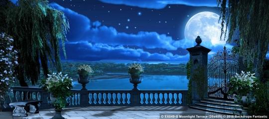 Moonlight Terrace EX049-S 20x45 Beauty and the Beast Backdrop Rental