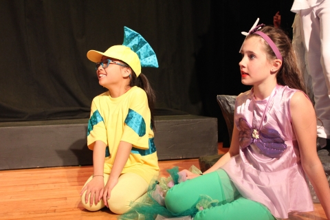 The Little Mermaid Jr Costumes Music Theatre International