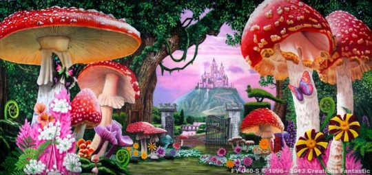 Wonderland 1 FY-040-S 20X45 Alice in Wonderland Backdrop Rental
