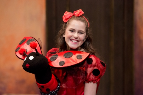 Lady Bug - Puppet