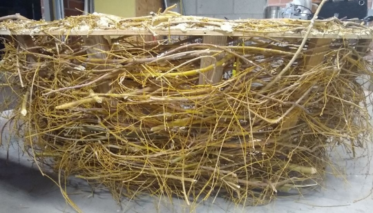 A semi sphere that is six feet in diameter and made from woven willow branches