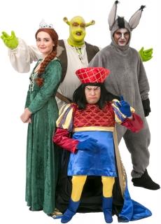 Shrek Costume Rentals And Sales