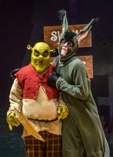 Shrek the Musical - Donkey & Shrek Costumes