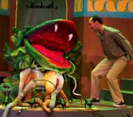 Audrey II Puppets
