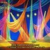 Le Cirque Celebration Drape Scenic Backdrop