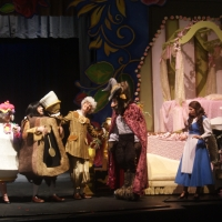 Beauty and the Beast Costuming
